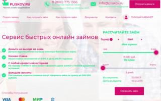 Займ в компании                        Pliskov