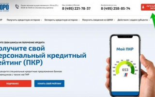 Национальное бюро кредитных историй (НБКИ): инструкция как узнать свою кредитную историю