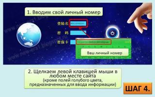 НОВАЯ ЭРА КАЗАХСТАН. Единственная в мире Государственная сетевая компания New Era в Казахстане