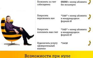Билайн личный кабинет — Пермский край