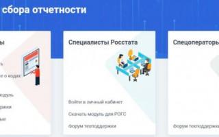 Как получить данные о кодах статистики на www.websbor.gks.ru