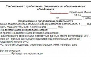 Отчетность НКО в Минюст, не выходя из дома!