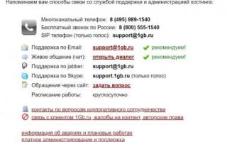 Обзор хостинга 1Gb (1Gb.ru)