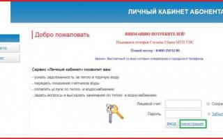 Инструкция по использованию Личного кабинета физического лица на сайте МУП УИС