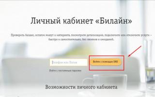 Личный кабинет Билайн – детализация звонков