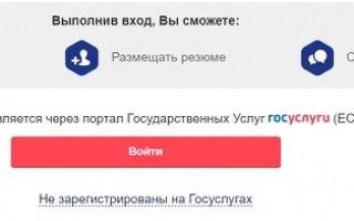 Личный кабинет на сайте «Работа в России»: регистрация с помощью сервиса Госуслуги, преимущества портала