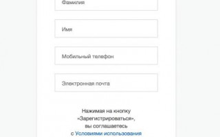 Госуслуги Саранск личный кабинет — вход, регистрация