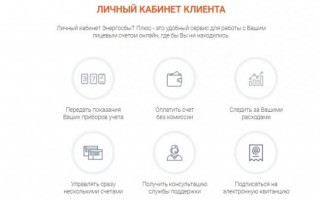 Передать показания Полевской АО «ЭнергосбыТ Плюс»