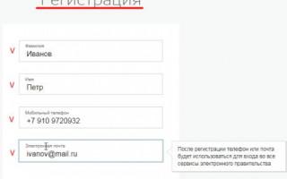 Госуслуги Нижнекамск личный кабинет