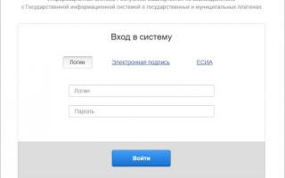 ГИС ГМП — что это такое, официальный сайт, штрафы, вход в систему, личный кабинет, проверка