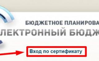 ssl.budgetplan.minfin.ru — Вход по сертификату