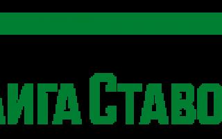 Лига Ставок букмекерская контора — официальный сайт, обзор и отзывы