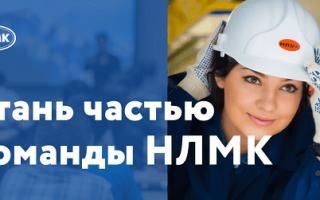 Личный кабинет на портале НЛМК: регистрация для сотрудников, поставщиков и покупателей