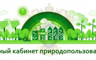 Личный кабинет природопользователя: для чего нужен и как зарегистрироваться