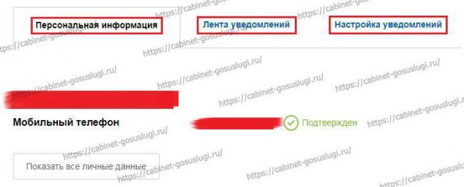 gosuslugi-lichnyj-kabinet-2.jpg