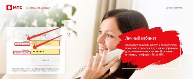 mts-sputnikovoe-tv%20%285%29.png