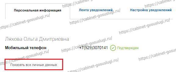 gosuslugi-lichnyj-kabinet-3.jpg