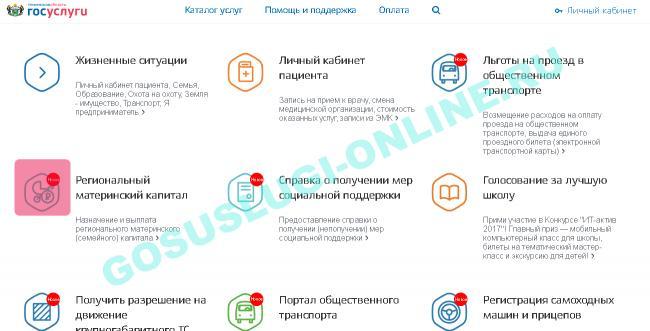 gosuslugi_v_tumeni_1.png