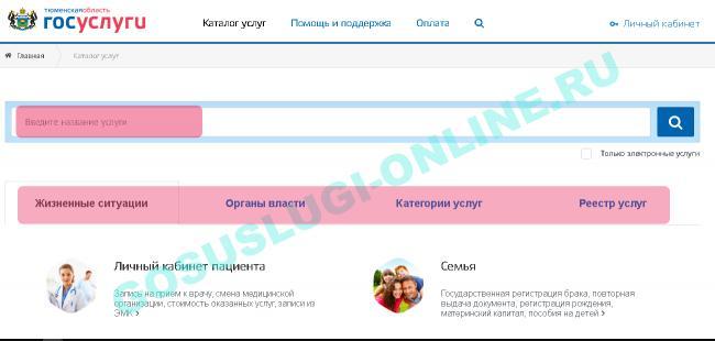 gosuslugi_v_tumeni_2.png