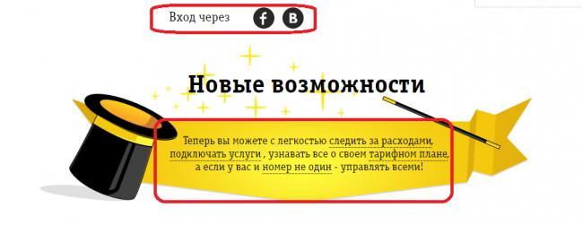 5-beeline-lichnyy-kabinet.png