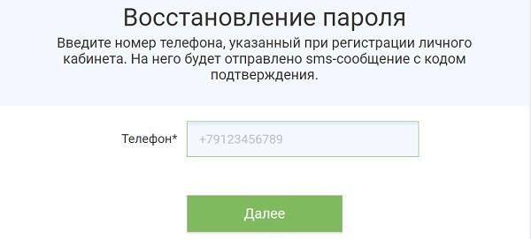 lichnyj-kabinet-proekta-lidery-rossii-registratsiya-zayavki-vosstanovlenie-dannyh-dlya-vhoda-2.jpg