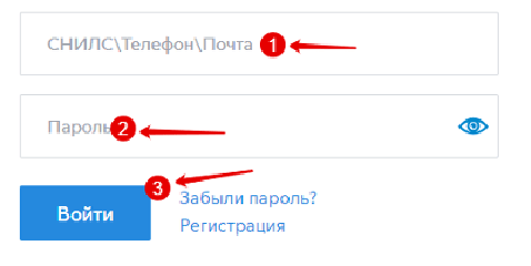 vojti-2.png