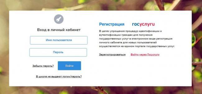 cabinet-ruobr-ru-cabinet-1-1024x479.jpg
